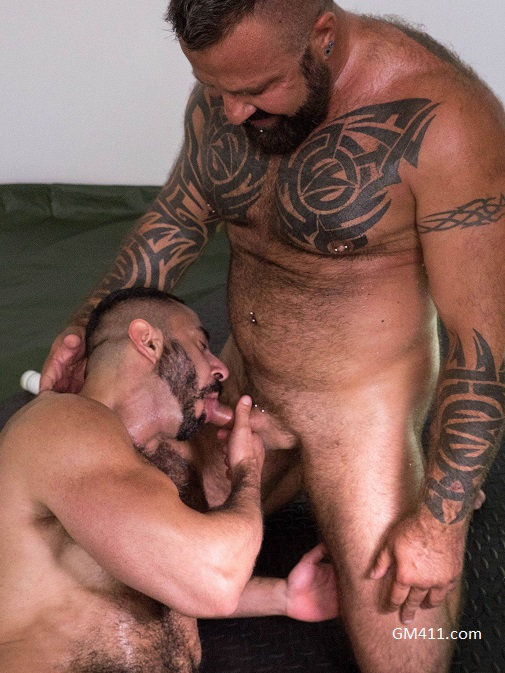 Gay sex - Marc Angelo and Amir Badri from Hairyandraw